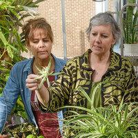 staff holding plants