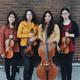 Bergamot String Quartet