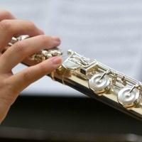 CANCELLED - Artist Series: Rhyne, Flute; Case, Harp; & Takekawa, Percussion