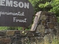 Clemson Experimental Forest Tours:  9/14/19