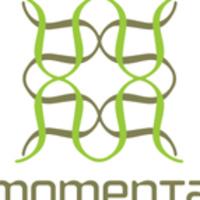 Momenta Workshop: Project Portland 2019