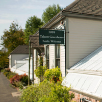 Firstie Plant Giveaway and Talcott Greenhouse Open House