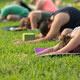 Yoga in the Pine Grove