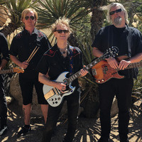 Surf Rock: Insect Surfers w/ Colonel Josh & The Honky-Tonk Heroes