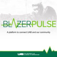 BlazerPulse Training