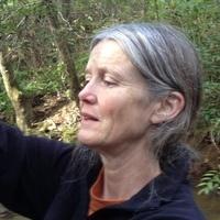 Conservation Seminar: Mary Freeman