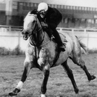 """Howard County Historical Society History Lecture: """"Billy Barton, Race Horse at Belmont"""""""