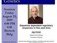 MBG Friday Seminar: Jay Hirsh - Dopamine dependent regulatory responses in flies and mice