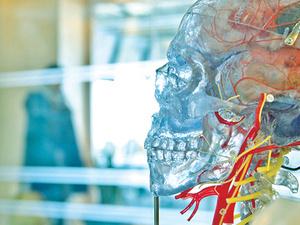 'Neurodevelopmental Mechanisms Linking Childhood Adversity with Psychopathology'