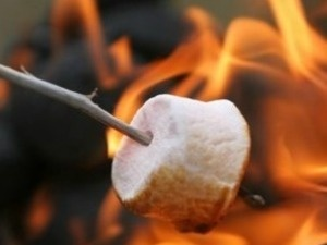 Marshmallow on a stick toasting over a fire