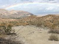 Carrizo Canyon Opening Day
