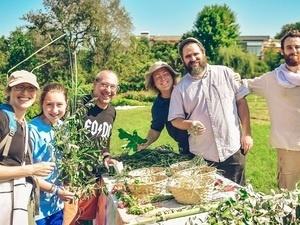 FAMILY FARM FESTIVAL: Harvest