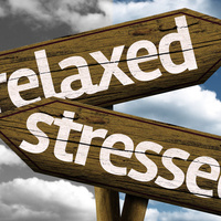 Lunch & Learn: Stress Less