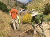 VOLUNTEER ONLY! Trail Stewardship