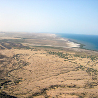 """Archaeologist Amanuel Beyin on """"Hominin dispersal pathways out of Africa: A view from the Red Sea basin"""""""