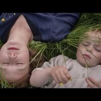 Big World, Big Screen: International Film Series