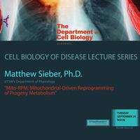 "Seminar: ""Mito-RPM: Mitochondrial-Driven Reprogramming of Progeny Metabolism"""
