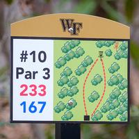 Disc Golf Flash Challenge