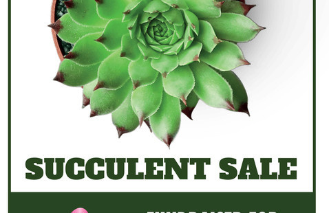 MAC Succulent Sale Fundraiser for Breast Cancer