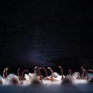 Richmond Ballet's SWAN LAKE