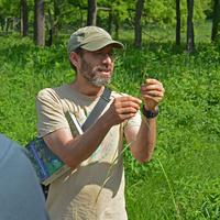 56 Million Years of Acorns: The Evolutionary History of the World's Oaks