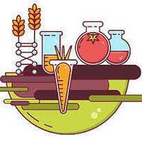 STEM Day: Food Science