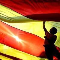 Diada de Catalunya (National Day of Catalonia)