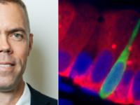 "BioSci Seminar - John Rawls, ""Integrative physiology of host-microbiota interactions in the vertebrate intestine"""