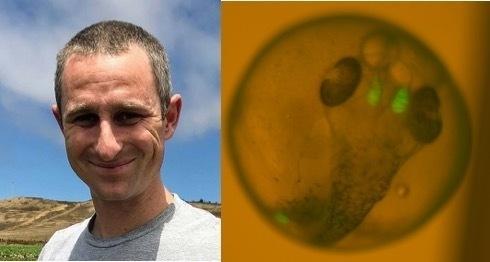 "BioSci Seminar - Craig Lowe, ""Copy number variation in vertebrate evolution and human disease"""
