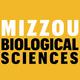Neurogenomics of social behavior in male threespined sticklebacks