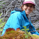 Investigating the leading edge of landscape change in an Alaskan subalpine chronosequence