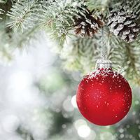 DIY: Ornaments