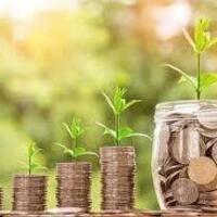 Financial Wellness: How Money Works