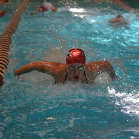 W-Swimming & Diving at Triangular