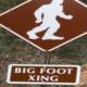 Leave a Big Footprint at the CoF Career Fair
