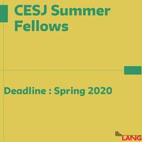 CESJ Summer Fellowship