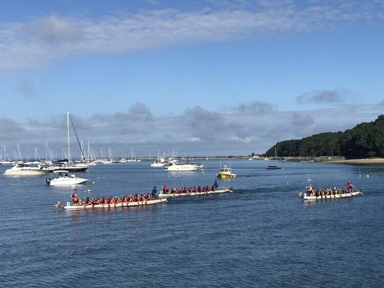 Port Jefferson Dragon Boat Race Festival