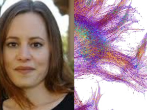 """Victoria Pitts-Taylor Reading Group Meeting: """"The Brain's Body"""""""