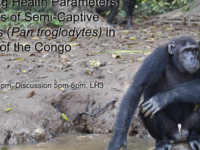 Understanding Health Parameters Among Groups of Semi-Captive Chimpanzees (Pan troglodytes) in the Republic of Congo