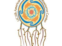 American Indian Identity Social