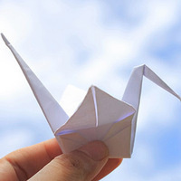 Peace Cranes for CeaseFire