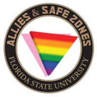 Allies & Safe Zones 101 Workshop