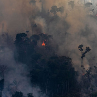 The Amazon is Burning! Historical and Contemporary Perspectives on the Current Crisis