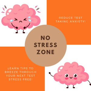 No Stress Zone: Reducing Test Taking Anxiety