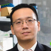 Next-Generation Regenerative Therapies for Heart and Lung Diseases: Cells, Secretome, and Exosomes