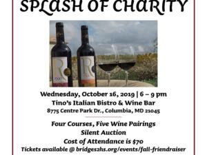 Taste of Wine, Splash of Charity event