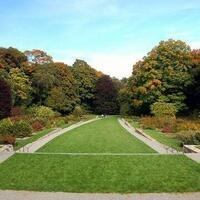 A Walk in Arnold Arboretum