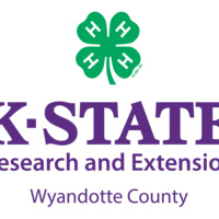 WyCo 4-H Horse Project: Mounted Drill Team Practice