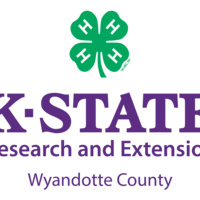 WyCo 4-H Horse Project: Showmanship/Safety Clinic