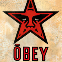 Visiting artist | In Conversation with Shepard Fairey